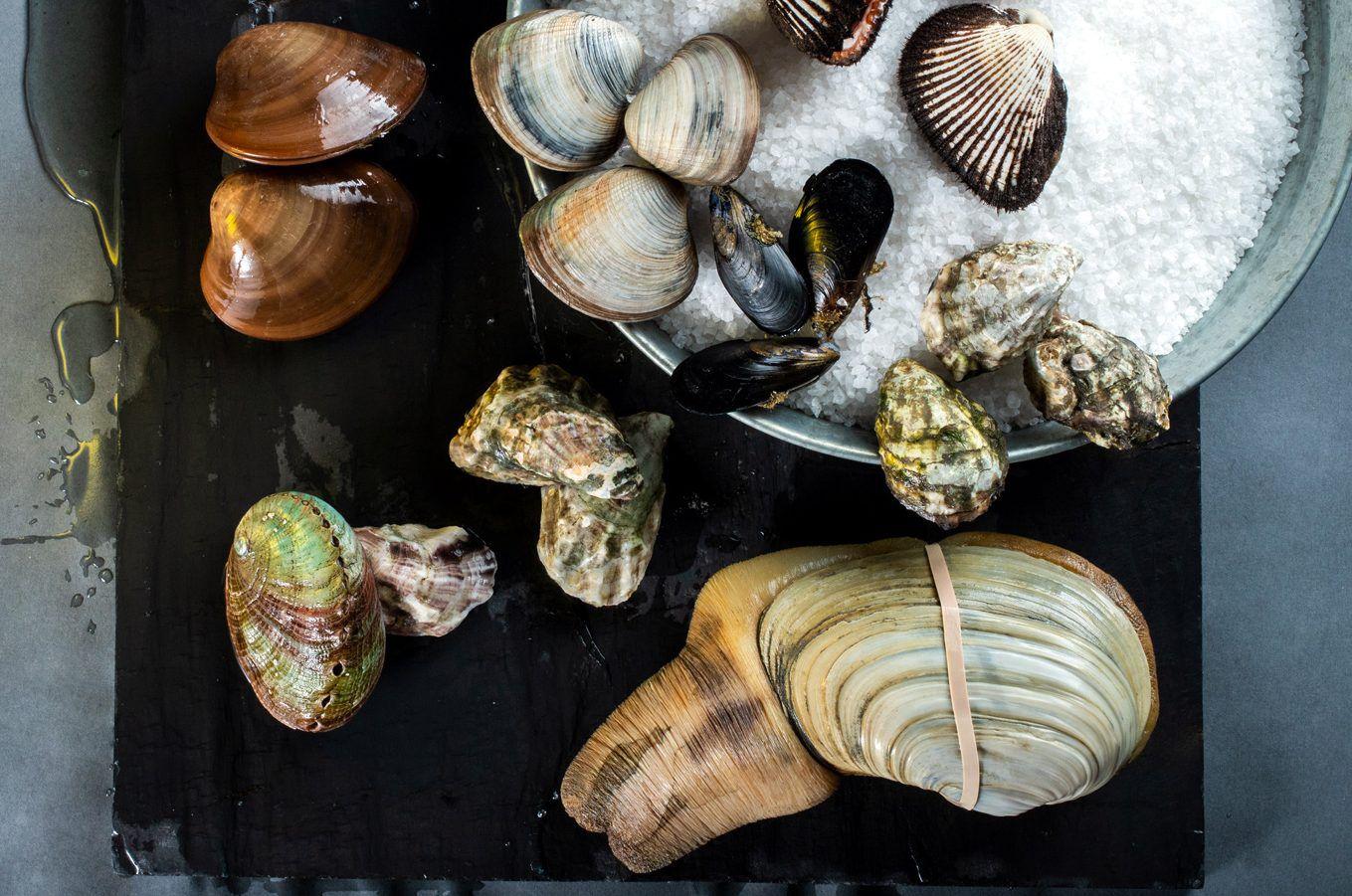 A los mercados de mariscos llegan los productos frescos, también algunos congelados, pero son expertos en recibir productos marinos y tratarlos. AGENCIA REFORMA