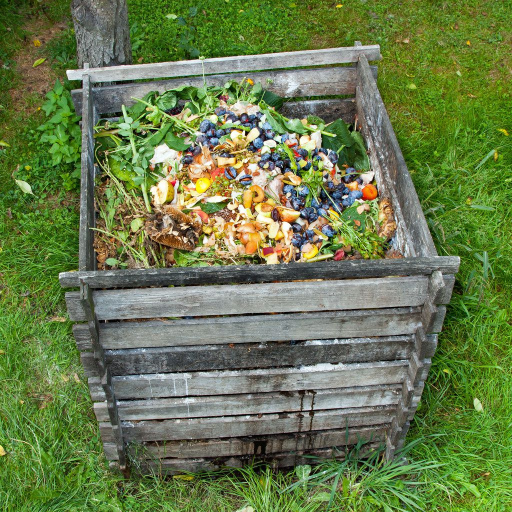 Compost bin in the garden.