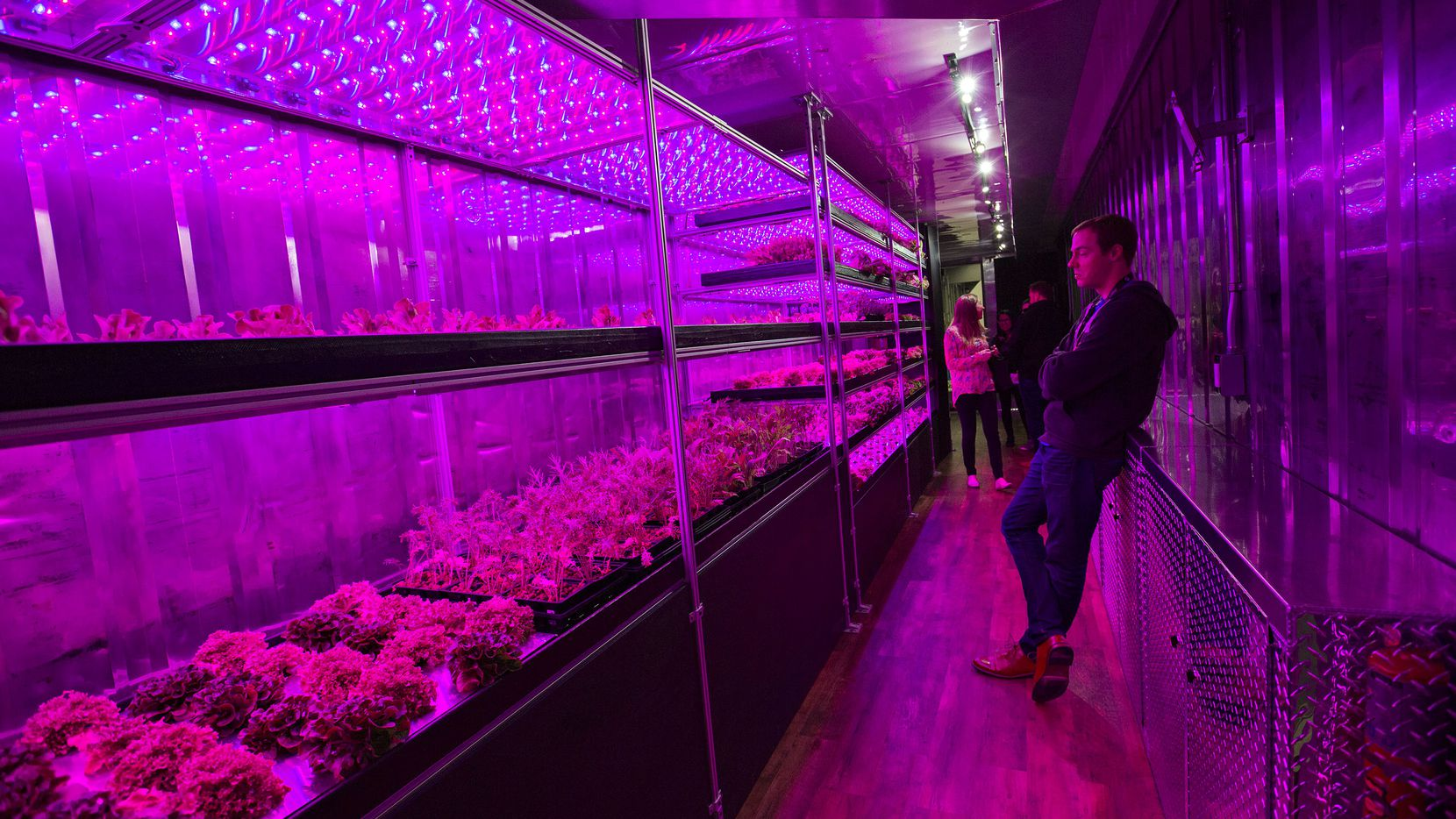 Eric Ellestad, CEO of Local Roots, stands in one of the company's indoor farms at SXSW. Local Roots, which has a mobile farm that can grow food all year round and in any climate, was on display during a trade show at the Austin Convention Center for SXSW.