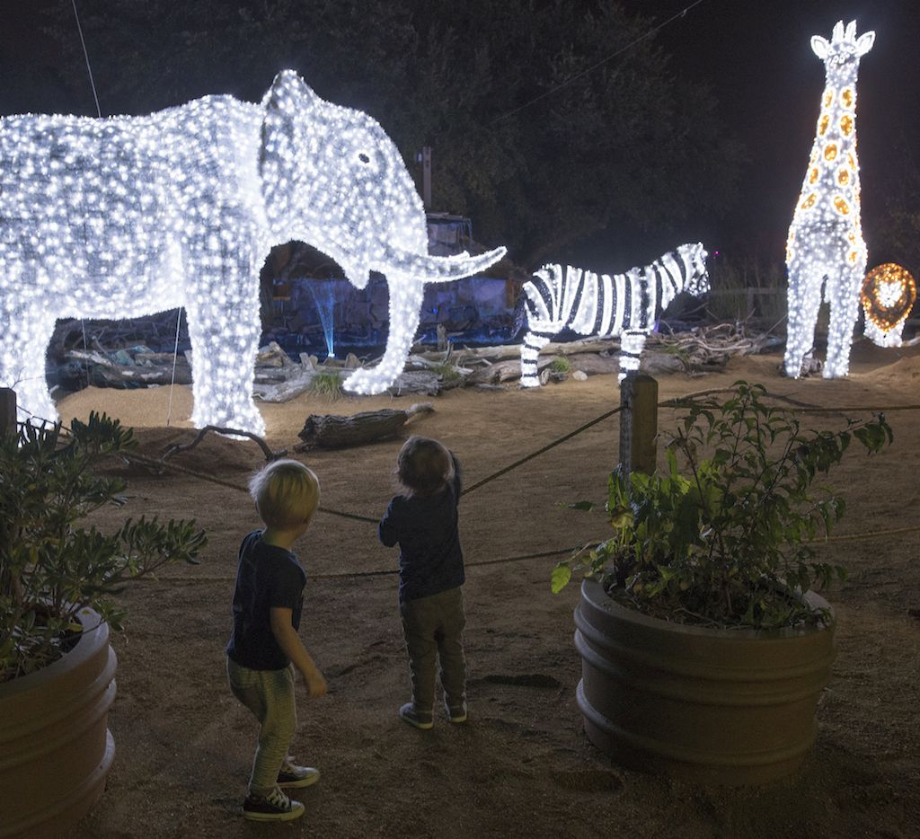 Children look at one of the light structures during the Dallas Zoo Lights event.
