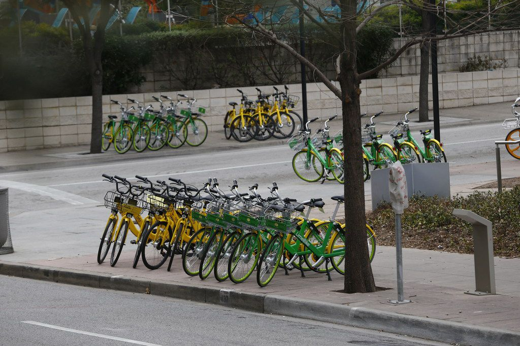 Rental bicycles are lined up neatly in rows in downtown Dallas on Jan. 19, 2018.