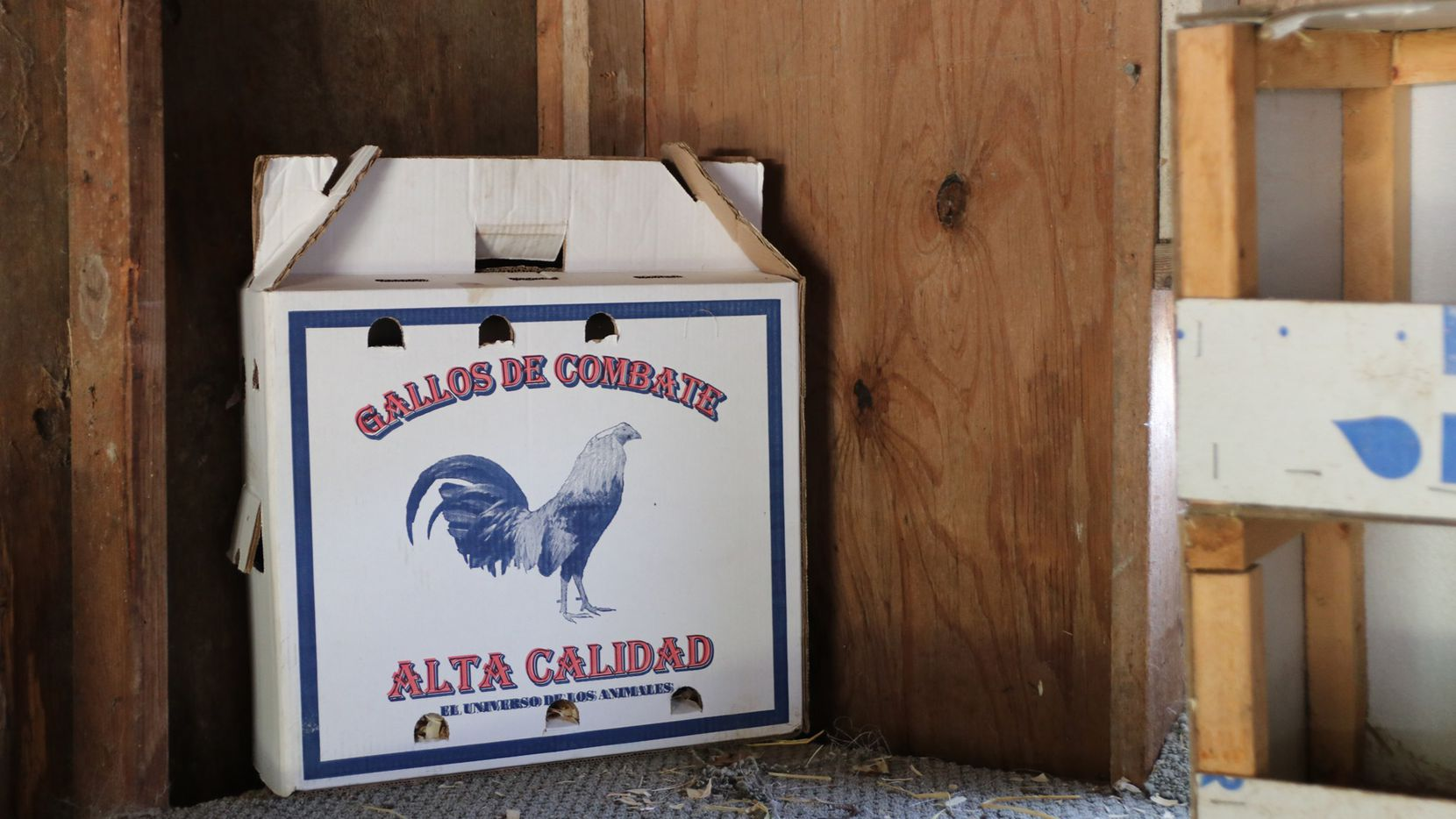 A box to transport cockfighting birds was found on the property where 176 animals were seized on suspicion of animal cruelty.