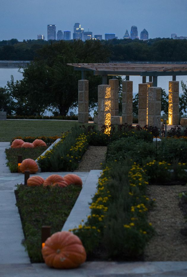 The Dallas skyline and White Rock Lake are seen from the new Tasteful Place edible garden at the Dallas Arboretum.