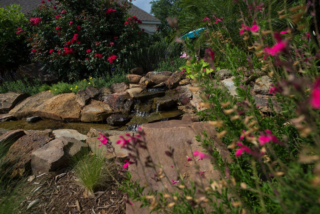 Flowers bloom around a rock fountain at Golden Farms.