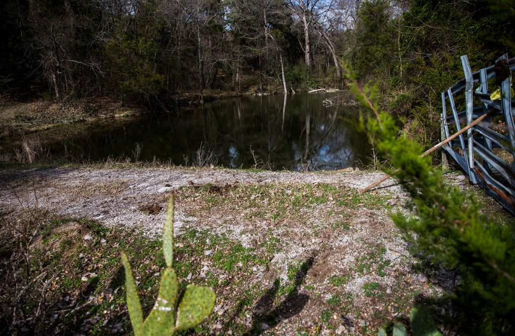 A spring sits near the Trinity River in McCommas Bluff Preserve inside the Great Trinity Forest.