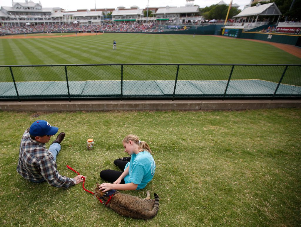 """William Van Hoosier with granddaughter Hadley Worsham, 12, and cat Chief, during """"Take Meow to the Ballgame,"""" a day where cat owners are encouraged to bring their cats to the ballpark at Dr Pepper Ballpark in Frisco, Texas, Sunday, May 21, 2017."""