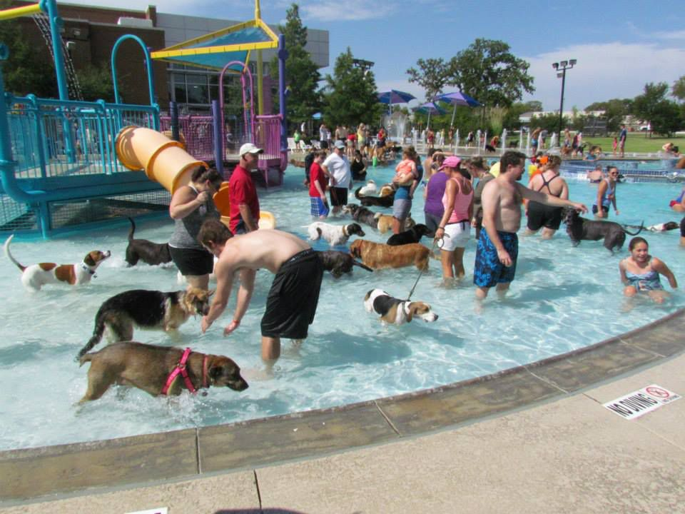 Keller's Doggie Dunk, which was rained out last weekend, has been rescheduled for Saturday.