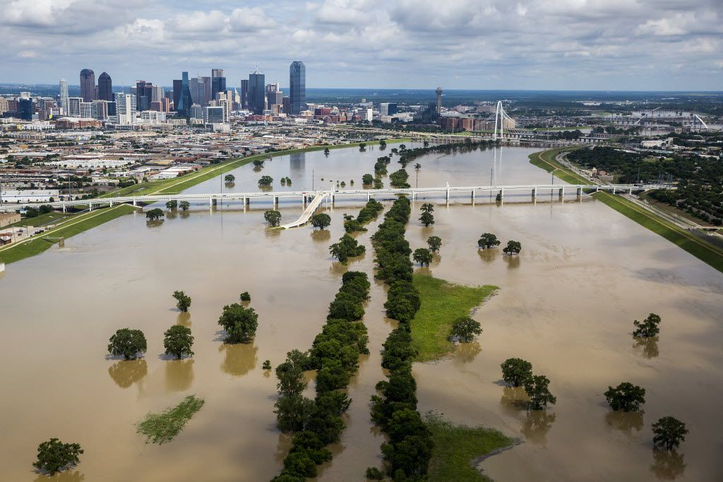 The swollen Trinity River runs toward downtown Dallas on Friday, May 29, 2015. (Smiley N. Pool/The Dallas Morning News)