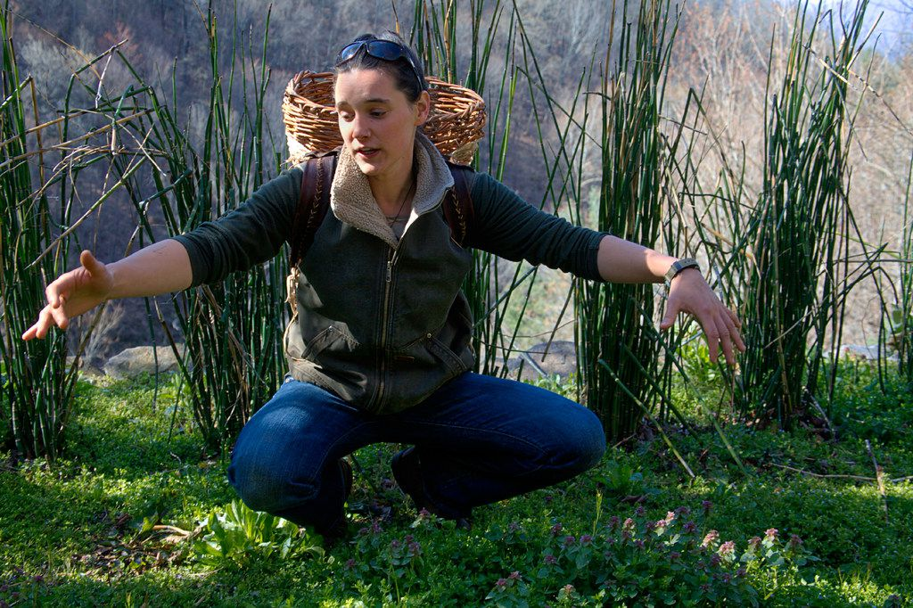 Allie Showalter of  No Taste Like Home guides adventurous travelers through the mountains, foraging for a variety of wild and tasty foods.