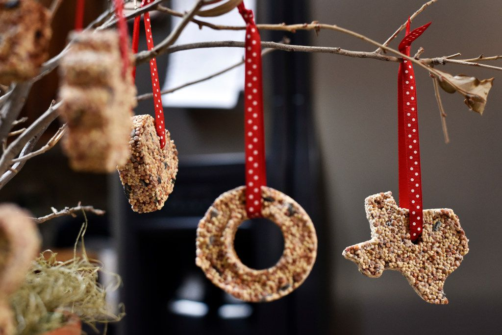 Tina Dempsey's Christmas ornaments of birdseed hang from a plant on display at her home.