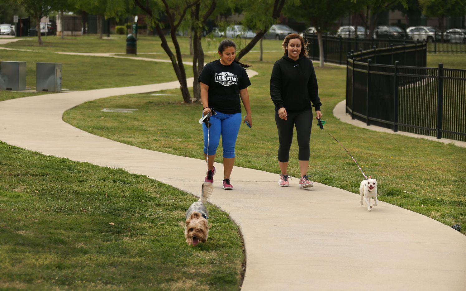A mild afternoon is the perfect setting for a leisurely stroll to NorthBark Dog Park, located near the intersection of the Dallas North Tollway and the Bush Toll Road, photographed on Saturday, April 1, 2017.