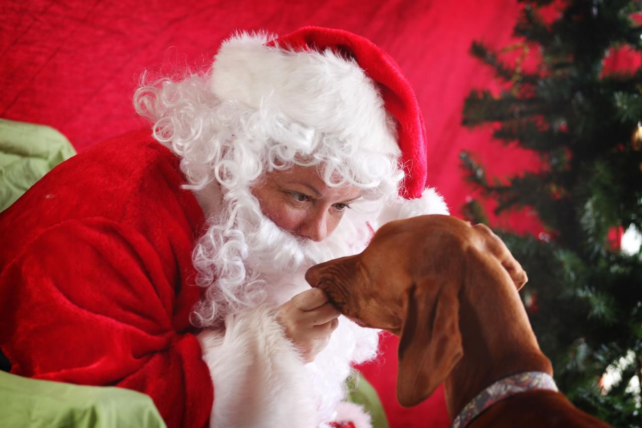 Casey Taylor of Dallas tried to convince Jake, a Vizsla, that her fake beard isn't so scary at Lee Harvey's.