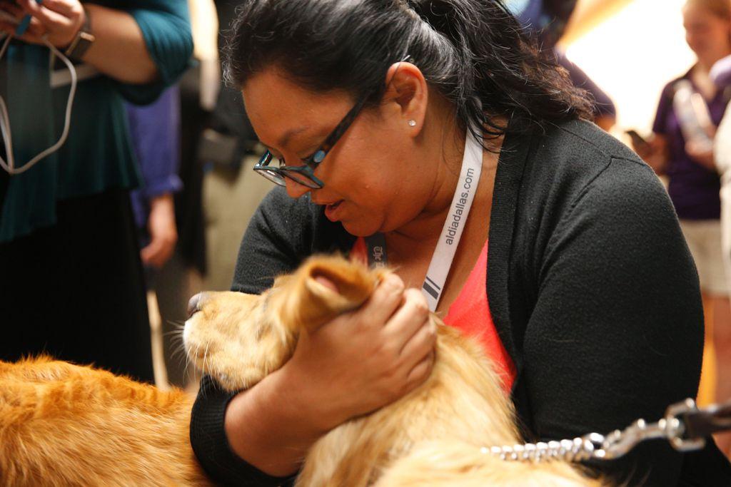 Karina Ramírez fue una de las reporteras que interactuó con los perritos especialistas en canoterapia  Foto: Nathan Hunsinger