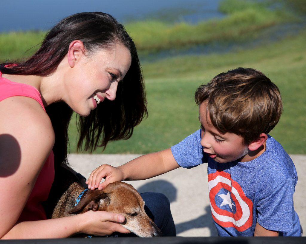 Donna Rosen surprises her son Braxton, 6, with their dog Bobo, who had been missing for over a year, at a park in Denton County on Monday, Aug. 14, 2017. Bobo went missing in the area over a year ago before Rosen was able to track him down in Oregon.