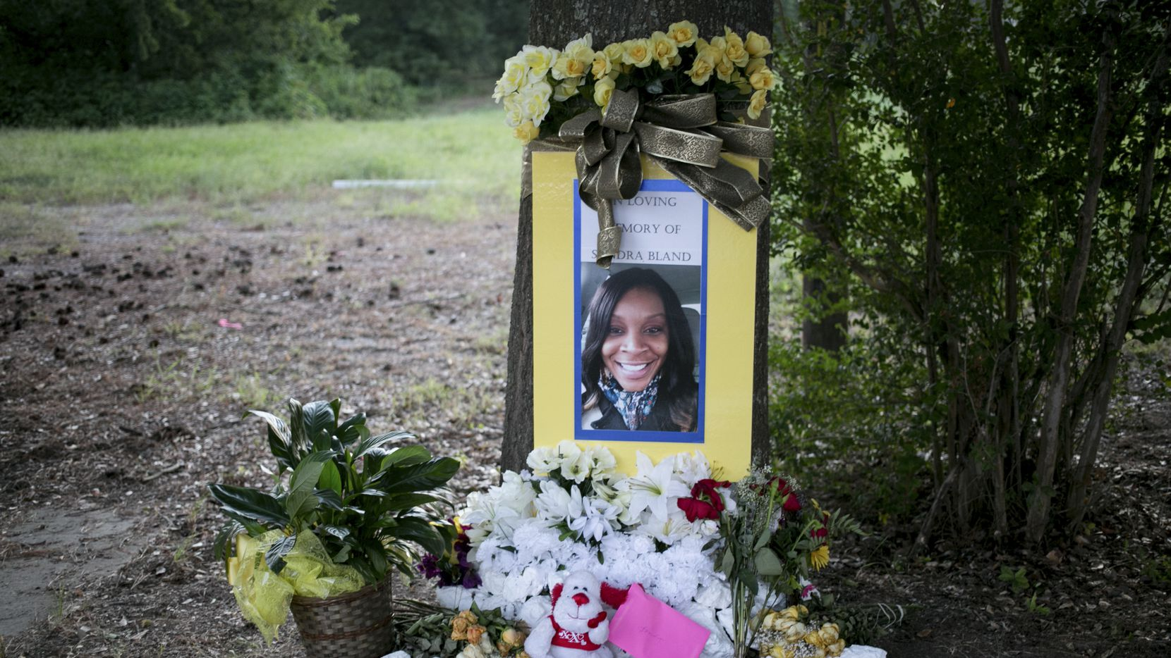 A memorial for Sandra Bland near where she was arrested in Prairie View, Texas, July 23, 2015.