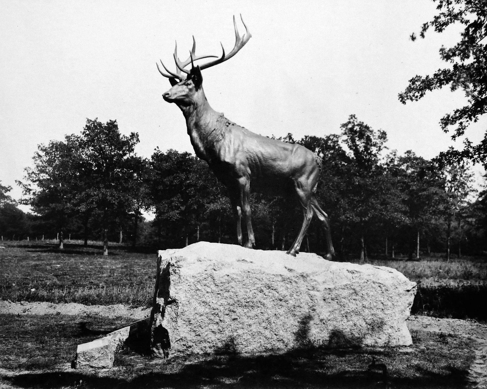A circa-1910 photo of the Elk's Monument, which once stood at the Oakland Cemetery in South Dallas, that's in the downtown library's possession, along with the other archives now collected in a single location for the first time,