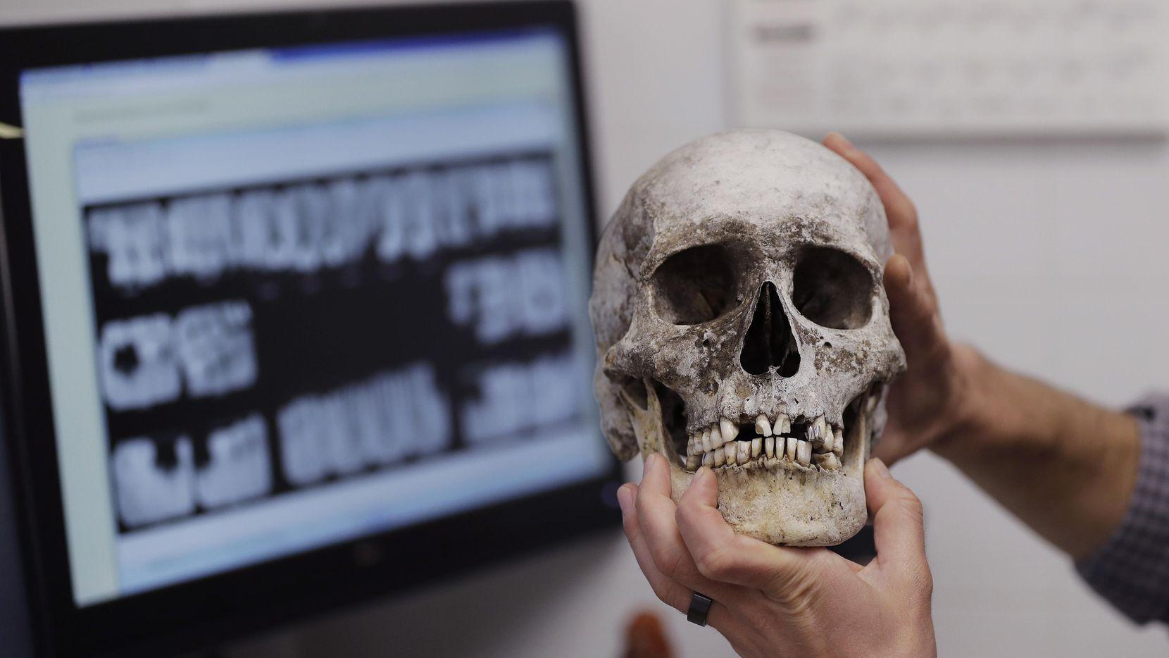 El doctor Tim Gocha usa archivos dentales mientras trabaja para identificar los restos de un inmigrante que murió en la frontera entre Estados Unidos y México, en el centro de Antropología Forénsica de Texas State, en San Marcos, Texas. (AP/ERIC GAY)