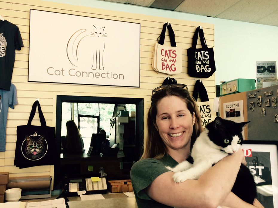 Simmer down meow: Cat cafes are (finally!) coming to Dallas