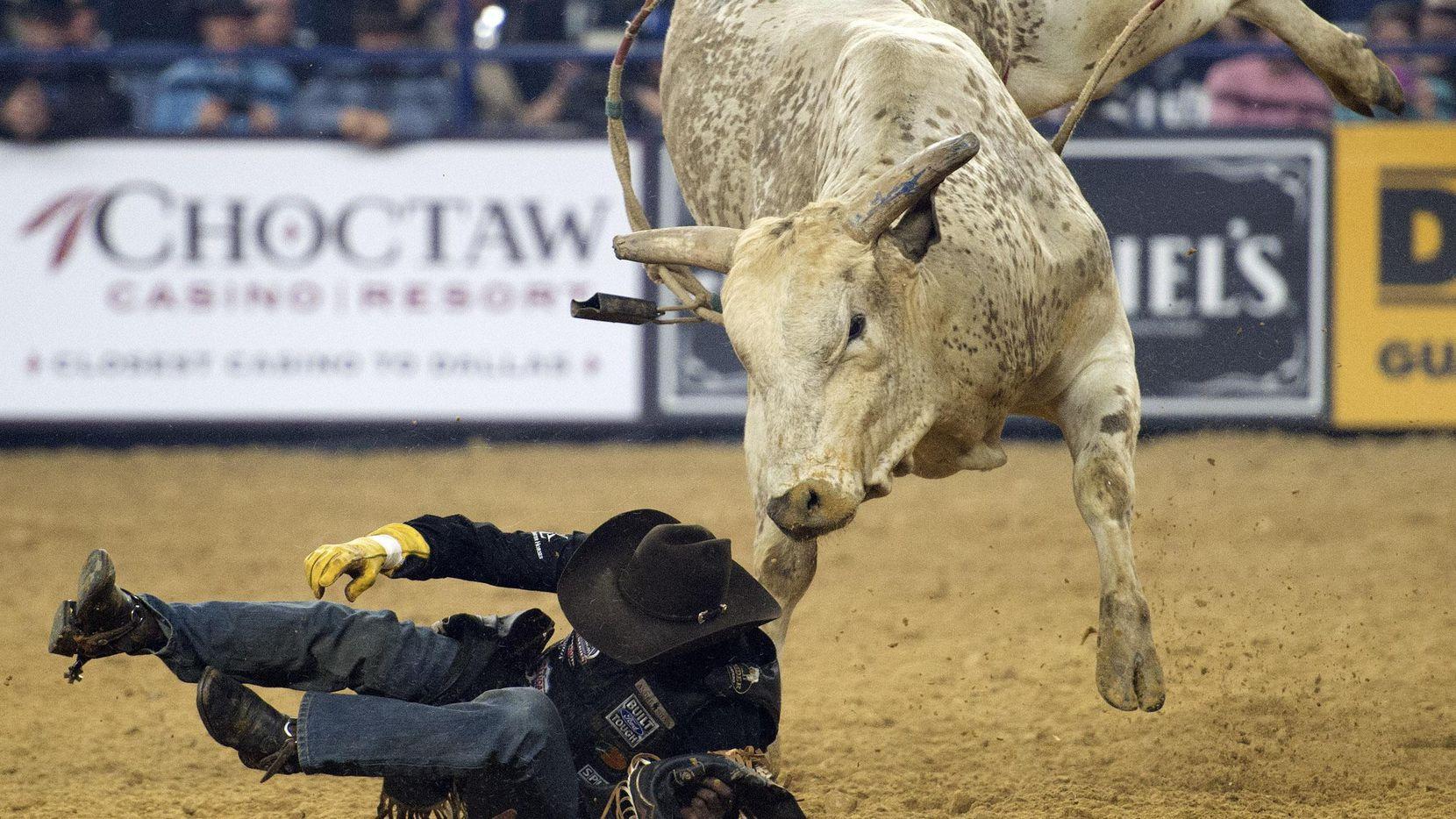Juliano Antonio Da Silva de Brasil es derribado por un toro en evento de monta de toros en el AT&T Stadium en 2016.(DMN)