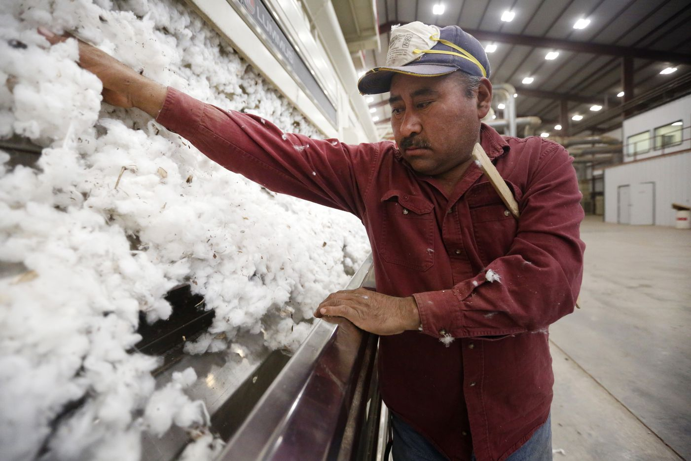Silvano Morales tends to cotton coming through a gin at Adobe Walls Gin.
