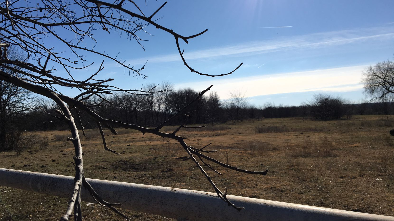 Frisco has contracted to buy 390 acres from Brinkmann Ranch for $61 million. The land is west of Preston Road and south of the future Panther Creek Parkway.