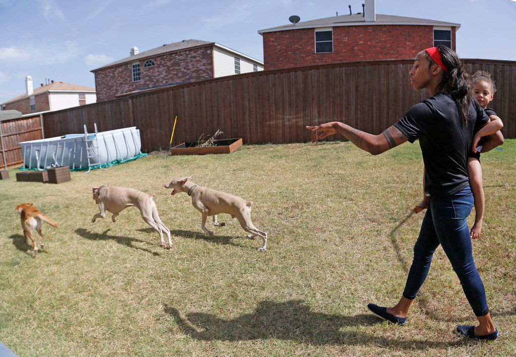 Dallas Wings' player Glory Johnson directs her dogs as she and and daughter Ava get ready to play in the backyard at their home in Arlington, Texas, on Saturday, June 30, 2018. (Louis DeLuca/The Dallas Morning News)