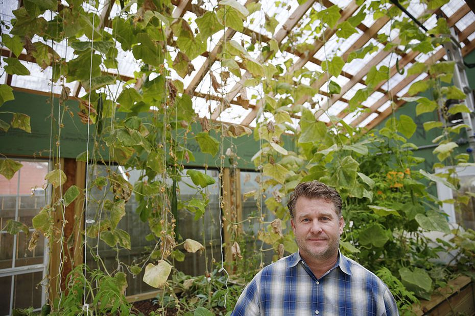 Daron Babcock stands for a portrait in a greenhouse containing cucumbers and tilapia in the Bonton neighborhood on Wednesday December 3, 2014.