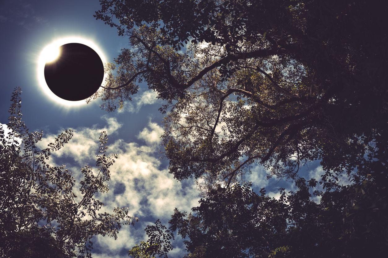Eclipse parcial de sol.