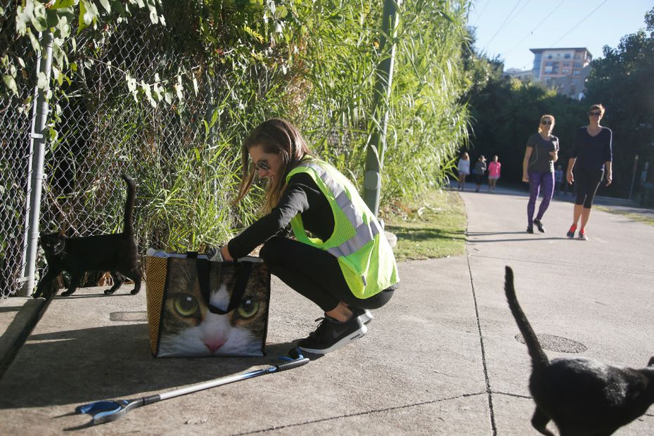 Two feral cats emerge as Tina Hoskins, trap-neuter-return director for Dallas Pets Alive, pulls dry food from her bag while feeding a colony of cats living along the Katy Trail.