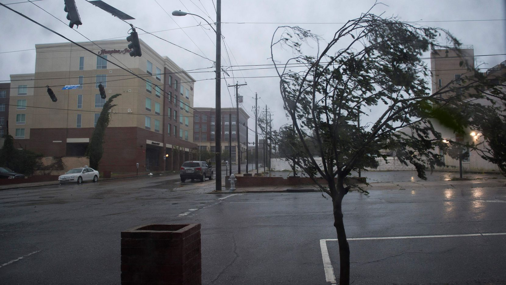 A tree in Wilmington, North Carolina, bends under heavy rain and wind during Hurricane Florence Friday.
