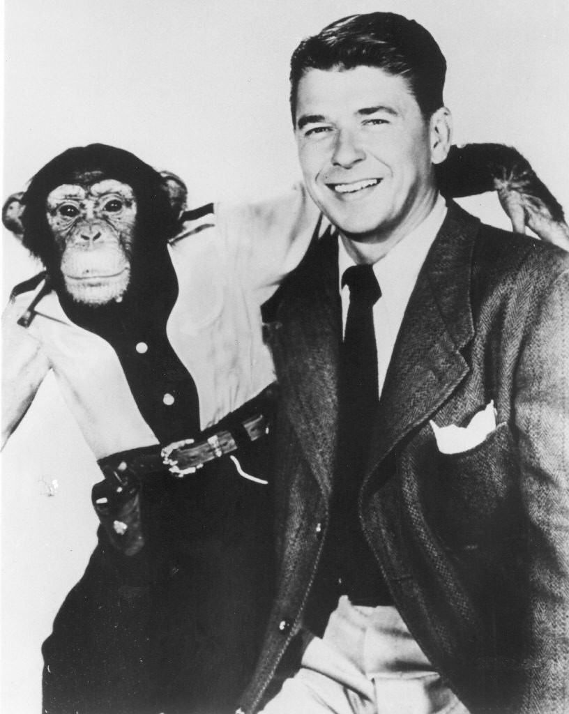 "This 1952 file photo shows former President Ronald Reagan and co-star Bonzo in a movie still from the film ""Bonzo Goes to College."""