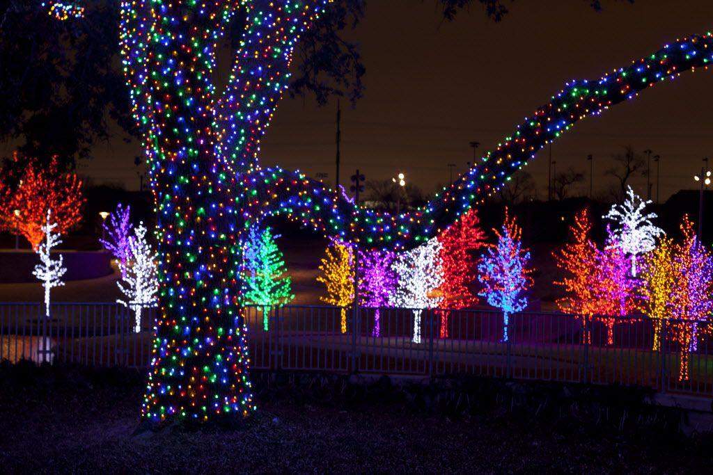 Vitruvian Lights en Addison/ ANN PINSON/DMN