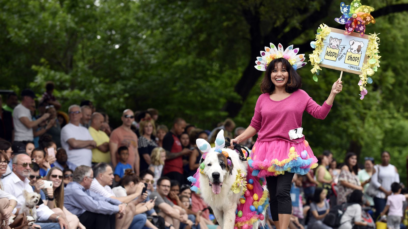 Eka Tris of Plano and her Bernese mountain dog, Boo Boo, marched during the pooch parade at Easter in Lee Park last year. Ben Torres/Special Contributor
