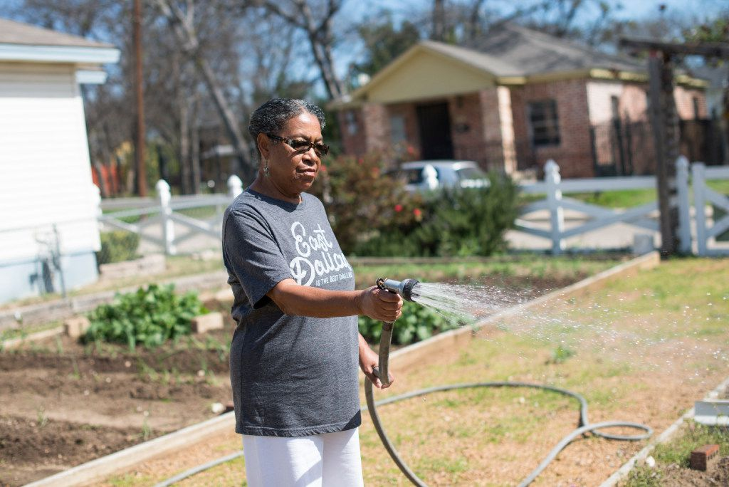 Anna Hill tends to the community garden next to her home in the Dallas neighborhood of Dolphin Heights on March 2, 2017.