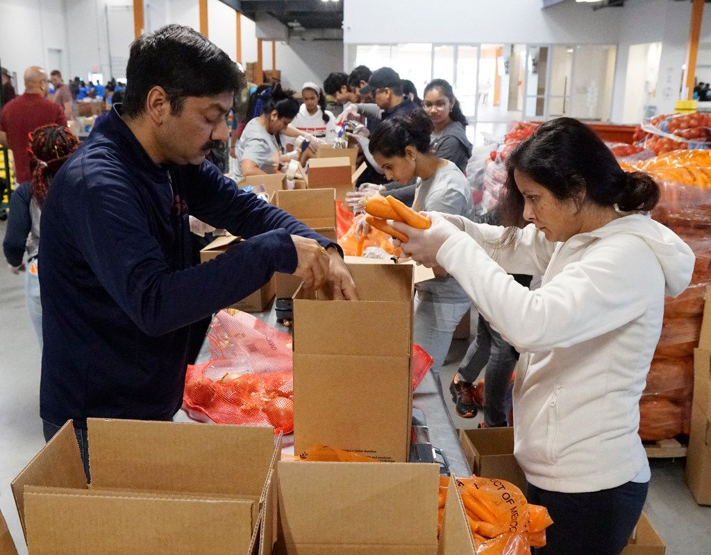 Neeraj and Archita Singh were among more than 100 volunteers with the Indian American Council at the North Texas Food Bank in Plano. (Lawrence Jenkins/Special Contributor)