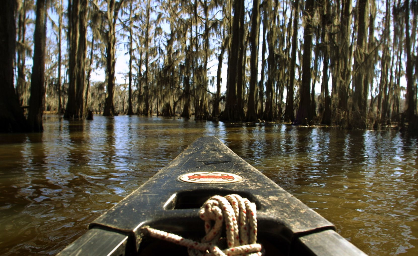 Caddo Lake in Uncertain, Texas. The 25,400-plus acre lake is the only natural lake in the state.