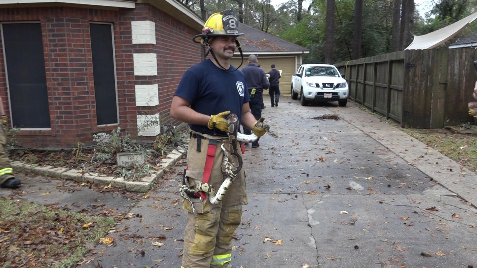 A firefighter holding one of many snakes removed from a Conroe home Saturday morning after a house fire.