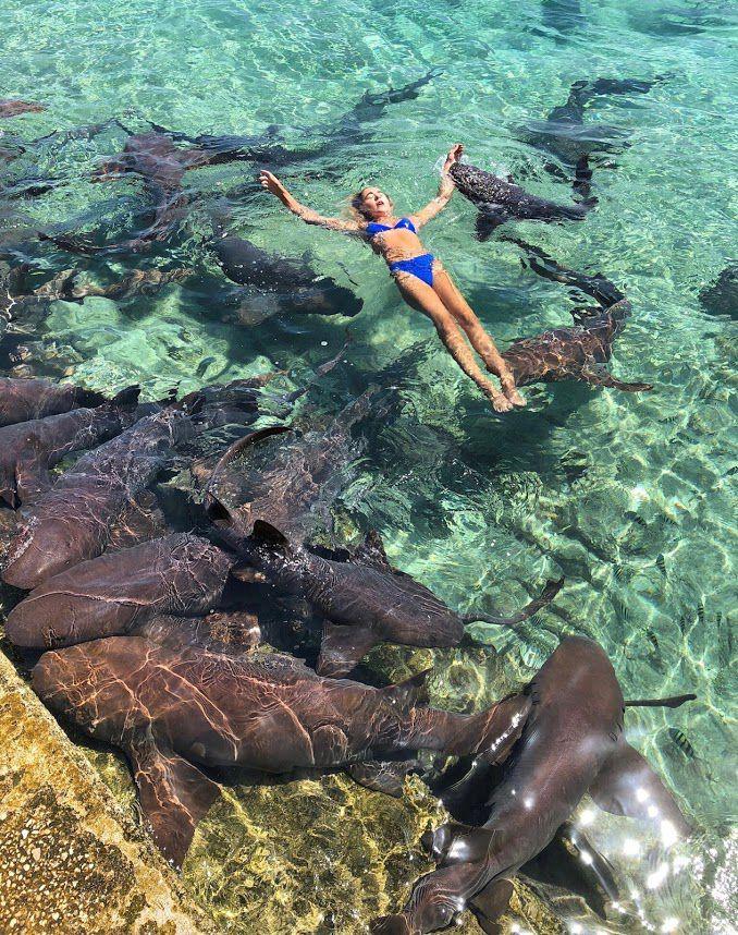 Nineteen-year-old Katarina Zarutskie of Houston was bitten by a nurse shark while on vacation in the Bahamas.
