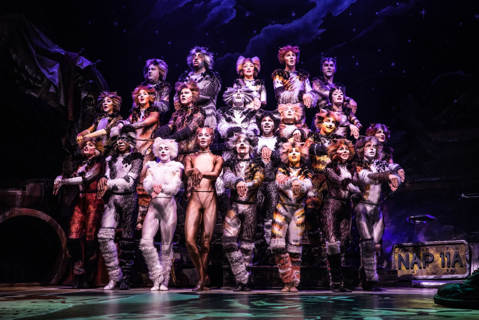 "The cast of the North American tour of ""Cats."""