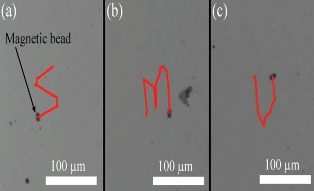 Tiny magnetic beads trace the letters S-M-U for Southern Methodist University