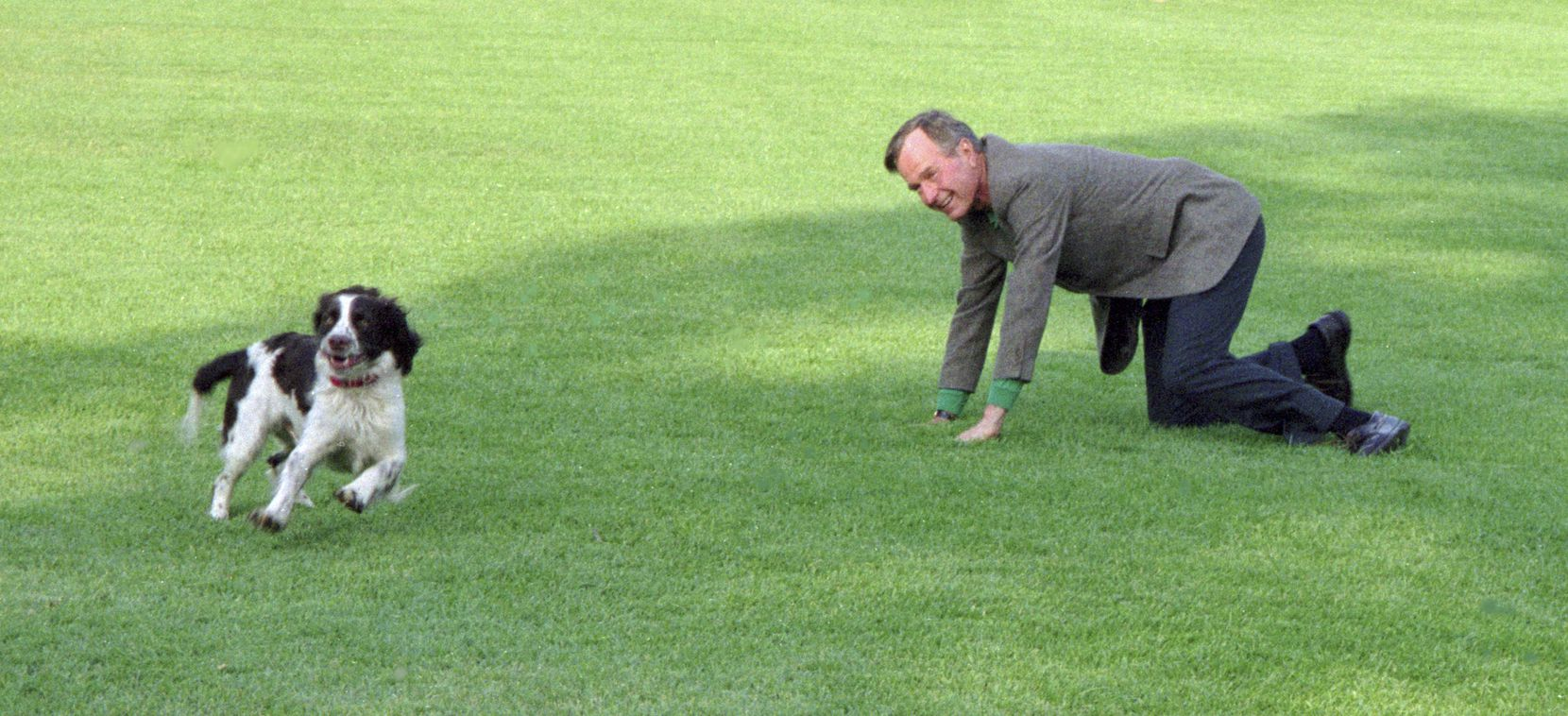 President George H. W. Bush plays with Ranger, an offspring of the couple's well-known dog Millie, on the South Lawn of the White House.