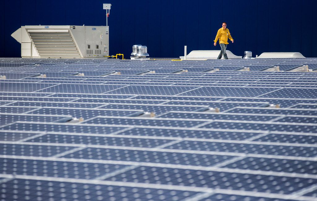 Store Manager Matt Hunsicker walks among 2,800 large format solar panels that have been installed on the roof of a new IKEA store on Tuesday, September 19, 2017 at the northeast corner of Interstate 20 and Texas 161 in Grand Prairie. The panels will produce approximately 2,000,000 kWh of electricity per year for the store. (Ashley Landis/The Dallas Morning News)