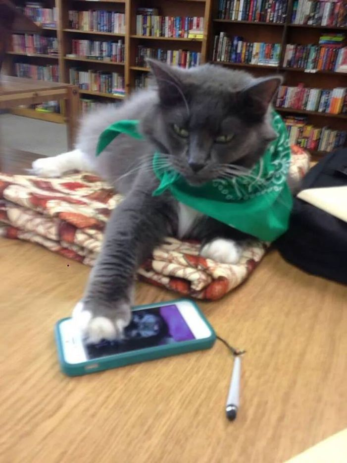 Whisper silences someone's phone at the Tri-County Library.