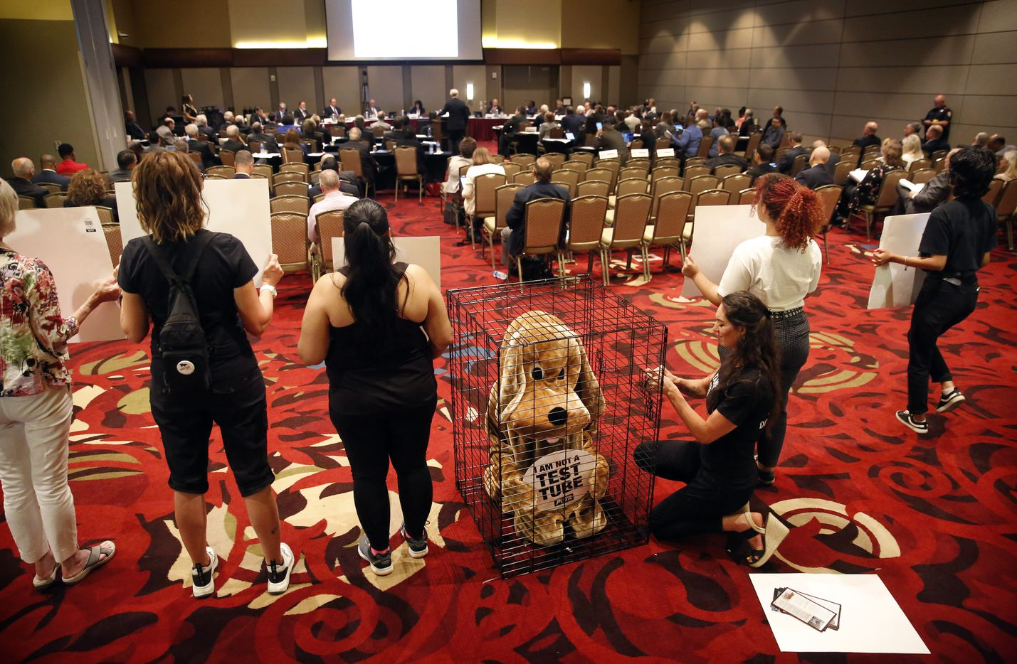 PETA supporter Dani Alexander (center, right) checks on Shane Phoenix, who was dressed in costume as a dog in a cage, during the Texas A&M University's (TAMU) Board of Regents meeting, on August 8, 2019.