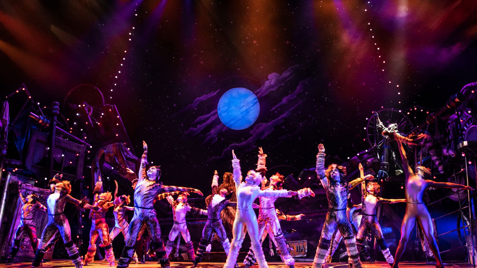 """Cats,"" the first mega-musical, has become a worldwide stage phenomenon, performed tens of thousands of times from New York to London to Tokyo."