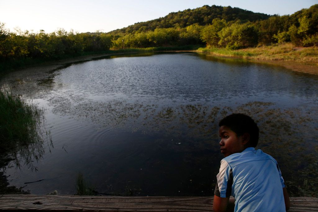 Ethan Dixson, 11, looks back from Cattail Pond at Cedar Ridge Preserve in Dallas on Friday, June 29, 2018. (Rose Baca/The Dallas Morning News)