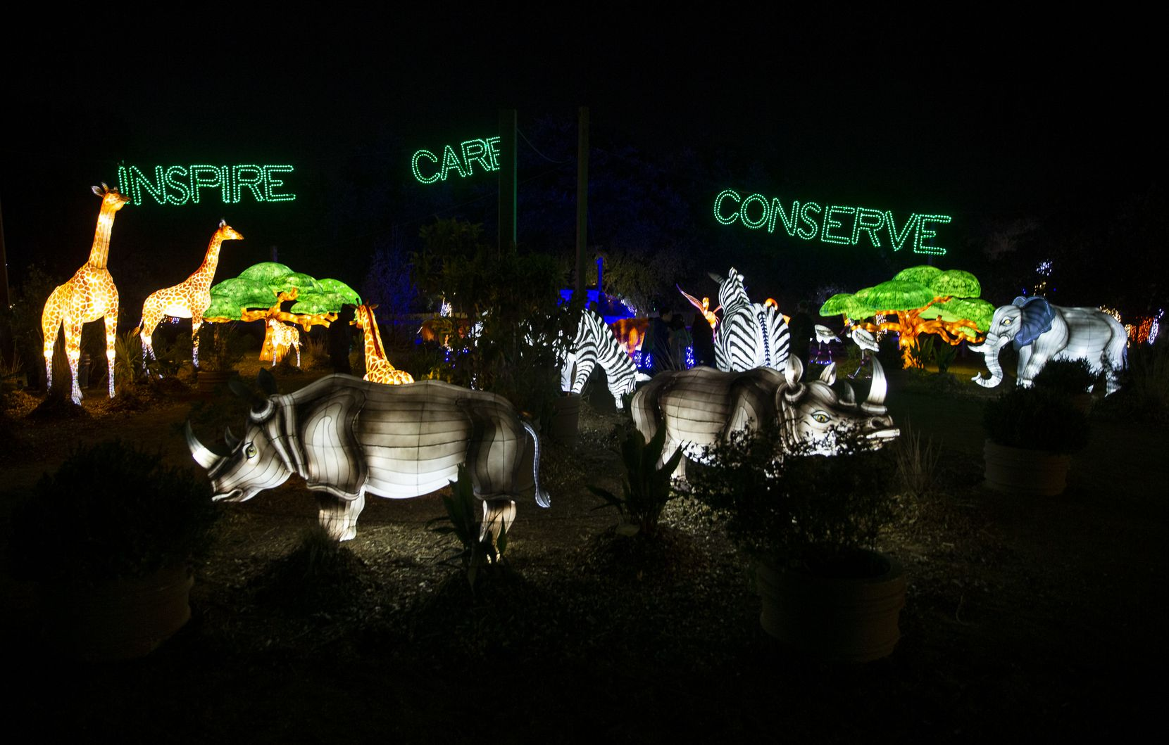 The Dallas Zoo Lights display includes silk-covered, animal-shaped lanterns that, for 2020, will be presented as a drive-through event.