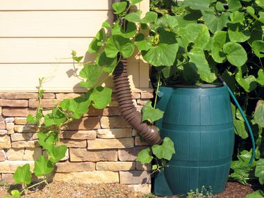 The City of Frisco will sell 50-gallon Ivy rain barrels and 65-gallon backyard compost bins to its residents at a discounted price through May 3.