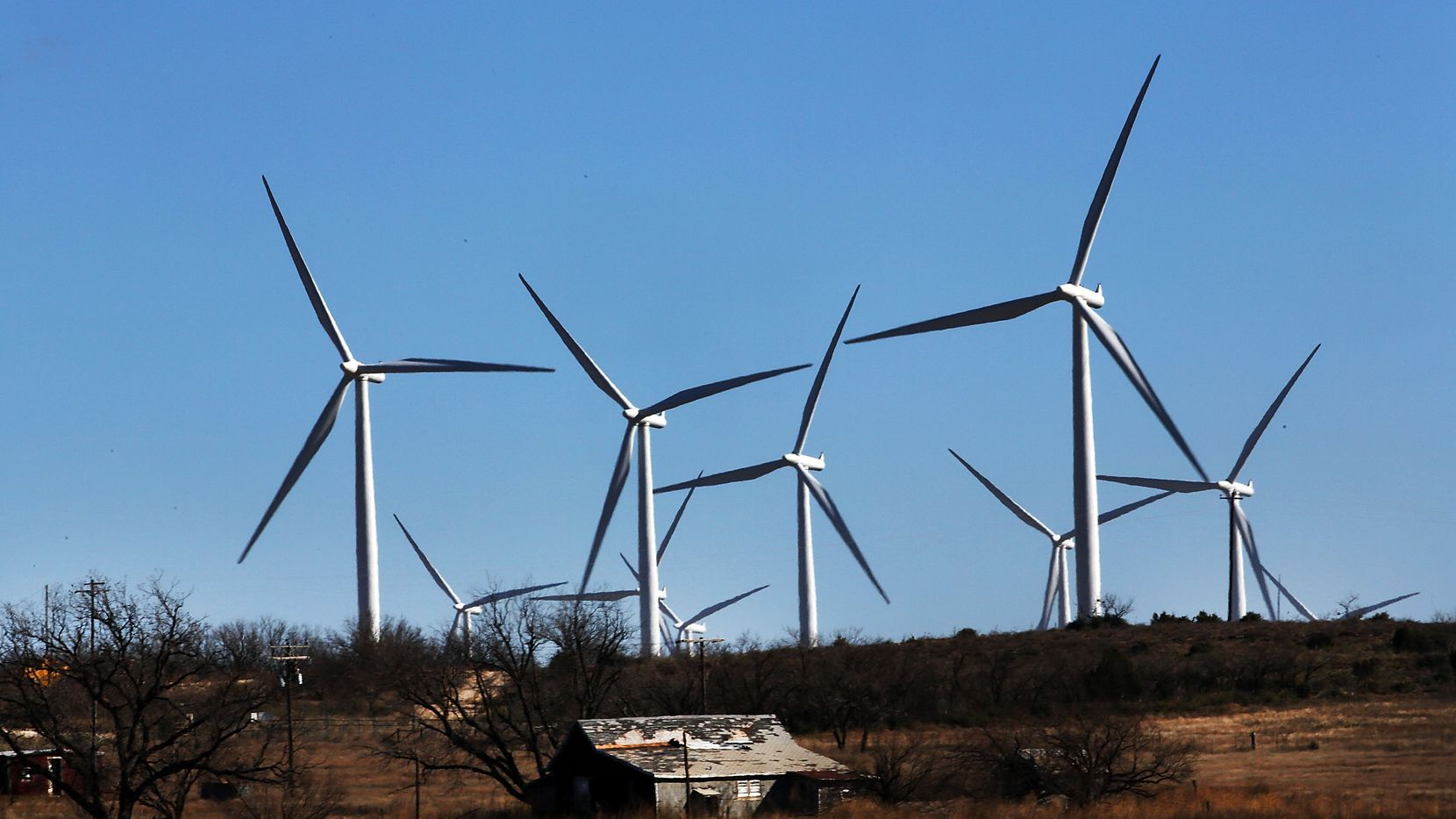 Wind turbines like these in Colorado City, Texas, provided 15 percent of the power on the ERCOT grid last year.