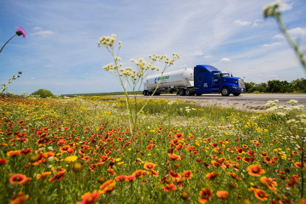 Liquefied natural gas is being delivered by an 18-wheelers from George West, Texas, about 130 miles to the Colombia-Solidarity International Bridge in Laredo past wildflowers on U.S. Highway 59.